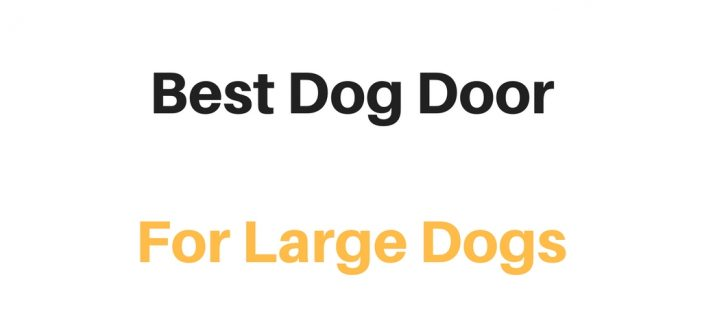 Best Dog Door For Large Dogs: Reviews & Buyer's Guide