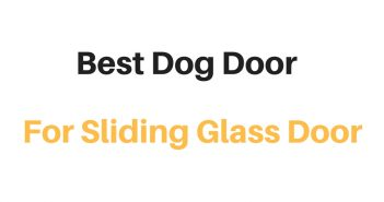 Best Dog Door For Sliding Glass Door: Reviews & Buyer's Guide