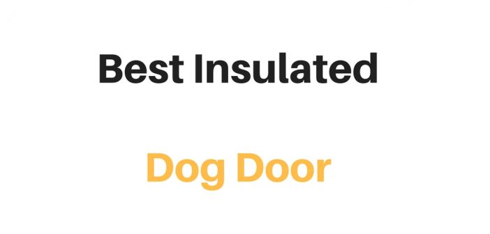 Best Insulated Dog Door: Reviews & Buyer's Guide