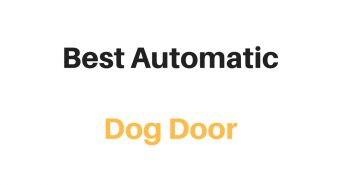 Best Automatic Dog Door: Reviews & Buyer's Guide