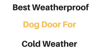 Best Weatherproof Dog Door For Cold Weather: Reviews & Buyer's Guide