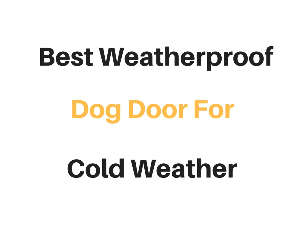 best weatherproof dog door for cold weather reviews With best weatherproof dog door