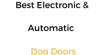 Best Electronic & Automatic Dog Doors: Reviews & Buyer's Guide