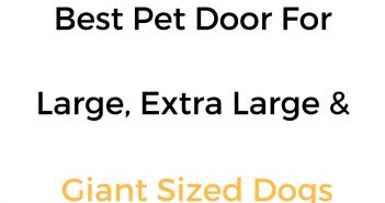 Best Dog Door For Large, Extra Large & Giant Sized Dog Breeds: Reviews