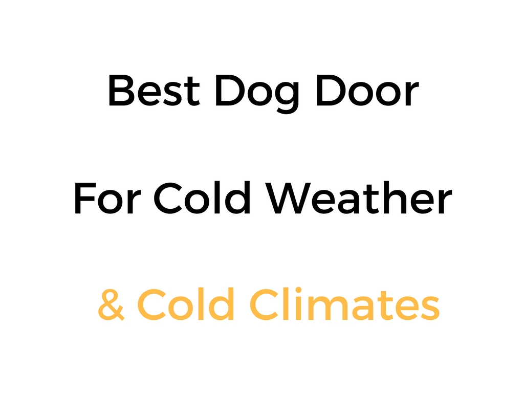 Best Dog Door For Cold Weather Cold Climates Reviews Buyers Guide