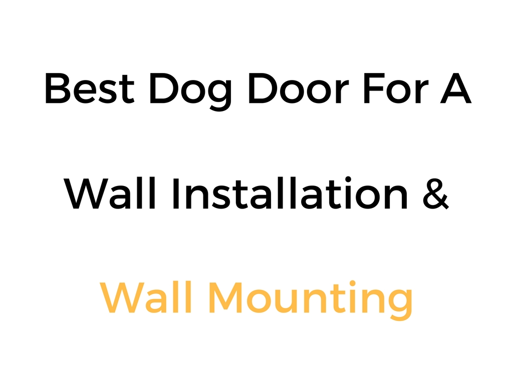 Best Dog Door For Wall Installation & Mounting: Reviews & Buyer's Guide