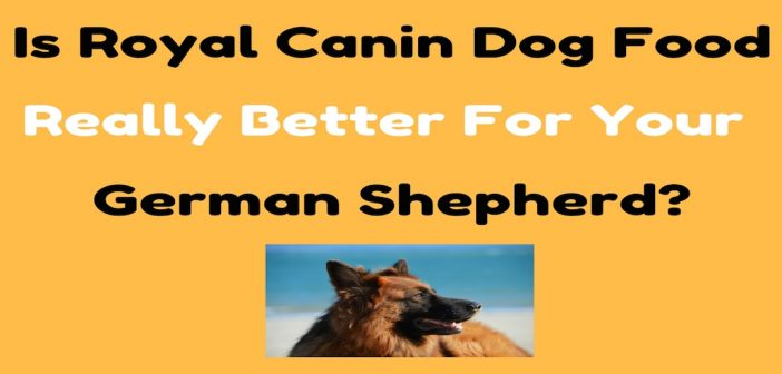 Is Royal Canin Dog Food Really Better For Your German Shepherd?