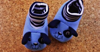 German Shepherd Shoes For Humans And For Dogs