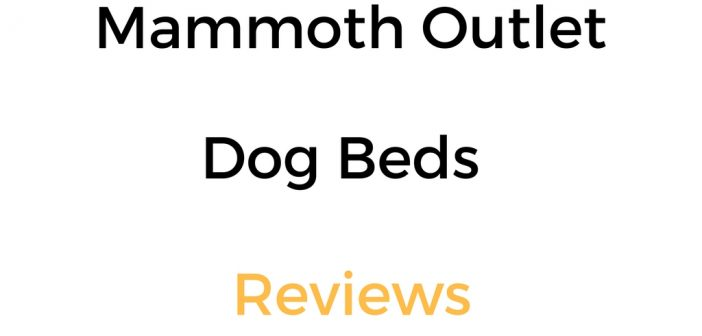 Mammoth Outlet Dog Beds Reviews