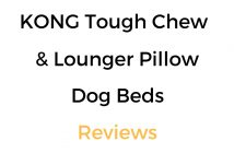 KONG Dog Bed Reviews: Tough Chew Resistant & Lounger Pillow Beds