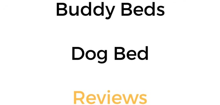 Buddy Beds Dog Bed Reviews