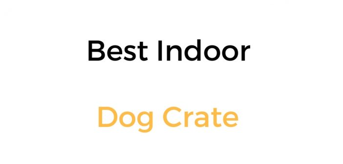 Best Indoor Dog Crate: Reviews and Buyer's Guide