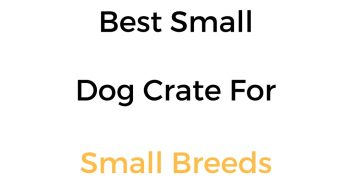 Best Small Dog Crate For Small Breeds: Reviews & Buyer's Guide