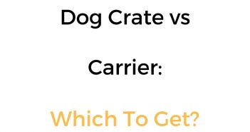 Dog Crate vs Carrier: Difference, Comparison & Which Is Better?