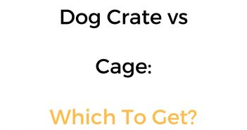 Dog Crate vs Cage: Difference, Comparison & Which Is Better?