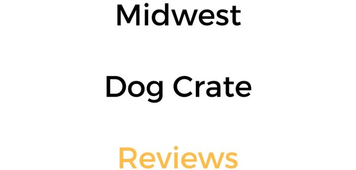 MidWest Dog Crate Reviews: iCrate, Life Stages, Ovation & Ultima Pro
