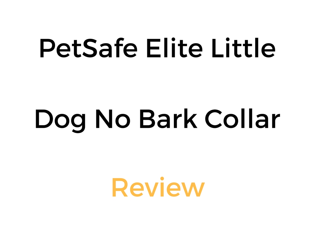 Petsafe Big Dog Deluxe Anti Bark Collar Review