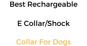 Best Rechargeable Dog Shock Collar, E Collar & Remote Training Collar