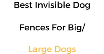 Best Invisible Fence For Large/Big Dogs: In Ground & Wireless Options