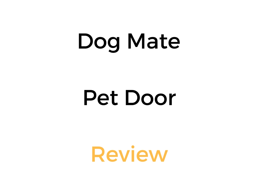 Dog Mate Dog Door Review Buyers Guide