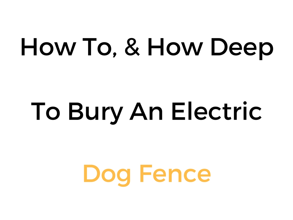 how to   u0026 how deep to bury an electric dog fence wire