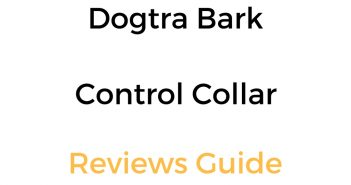 Dogtra Bark Control Collar Reviews & Comparison Guide