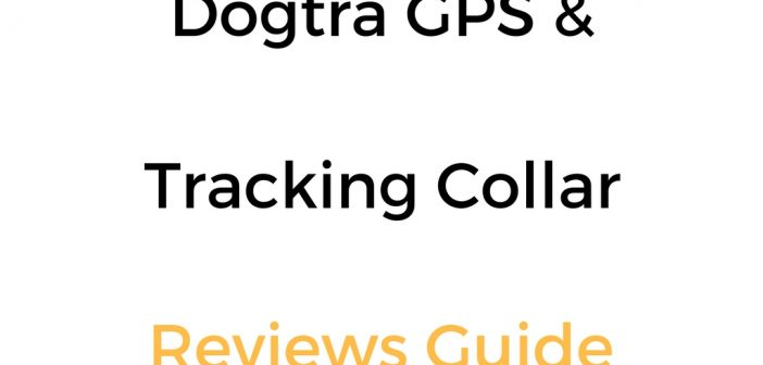 Dogtra GPS & Tracking Collar Reviews Guide
