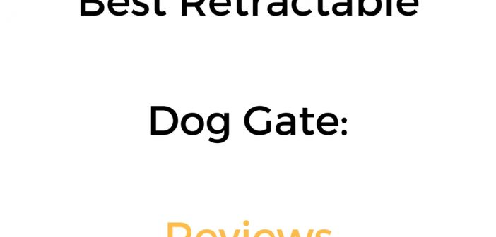 Best Retractable Dog Gate: Reviews & Buyer's Guide