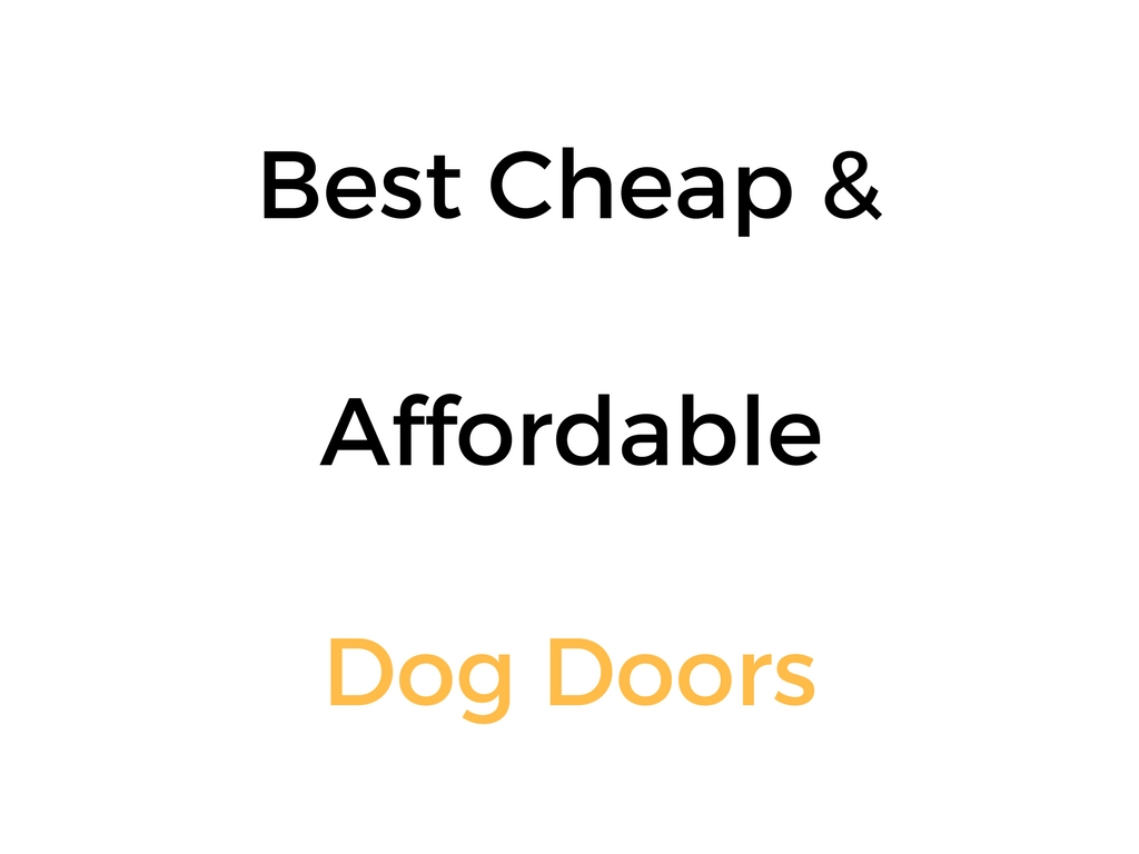 Best Cheap Affordable Dog Doors Reviews Buyers Guide