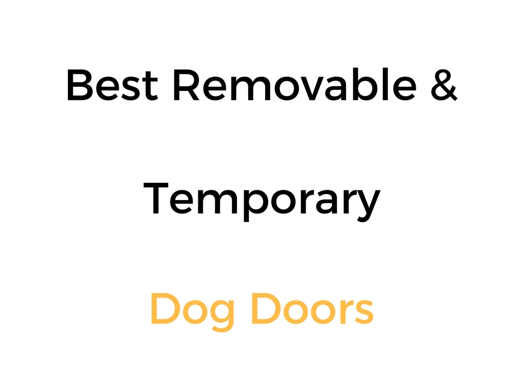 Best Removable Temporary Dog Doors Reviews Buyers Guide
