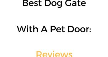 Best Dog Gate With A Pet Door: Reviews & Buyer's Guide