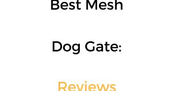 Best Mesh Dog Gate: Reviews & Buyer's Guide