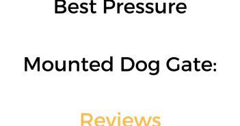 Best Pressure Mounted Dog Gate: Reviews & Buyer's Guide