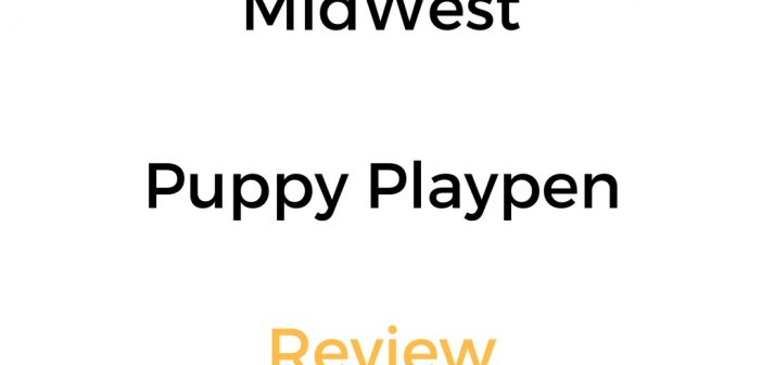 MidWest Puppy Playpen: Review & Buyer's Guide