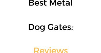 Best Metal Dog Gates: Reviews & Buyer's Guide
