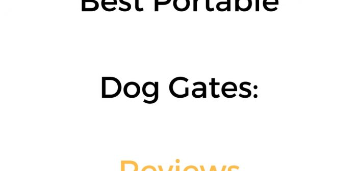 Best Portable Dog Gate: Reviews & Buyer's Guide