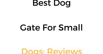 Best Dog Gate For Small Dogs