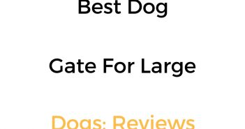 Best Dog Gate For Large Dogs: Reviews & Buyer's Guide