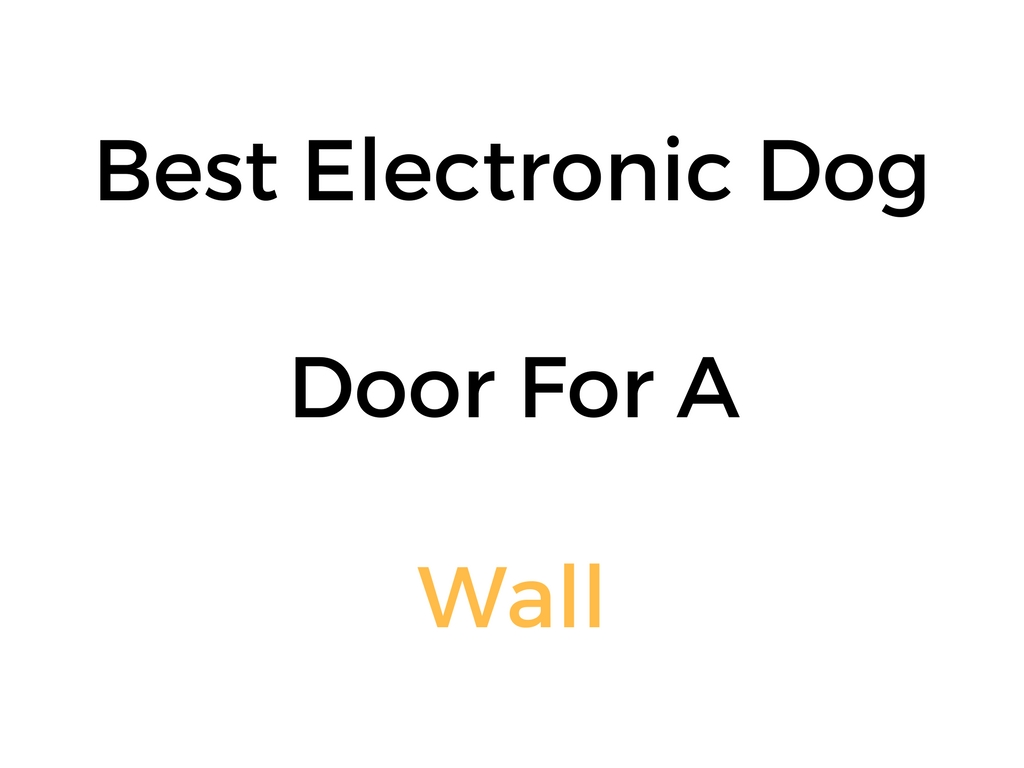 Best Electronic Dog Door For Wall Mounting Or Installation