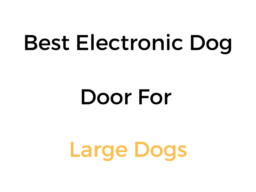 Best Electronic Dog Door For Large Dogs
