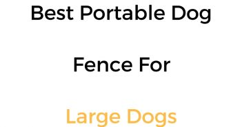 Best Portable Dog Fence For Large Dogs