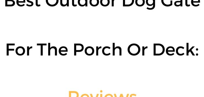 Best Outdoor Dog Gate For A Porch Or Deck