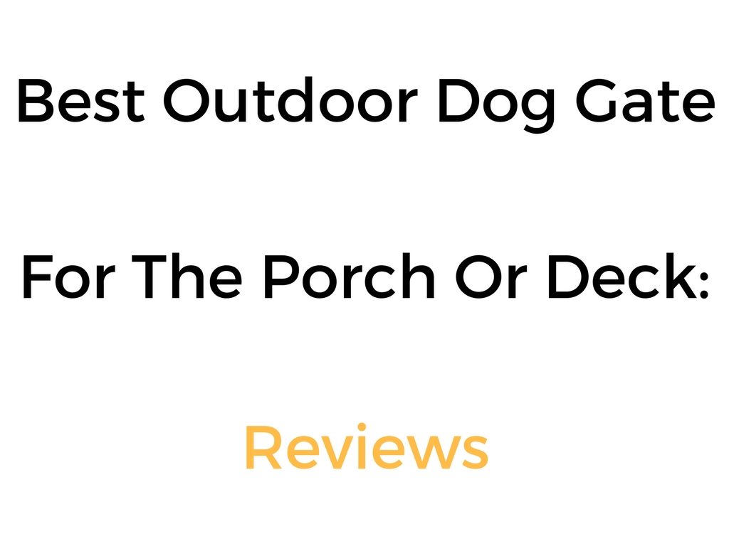 in decks youtube build inside for dog uncategorized pets porch no sag gates gate of diy dogs full outdoor with impressive deck size a stunning