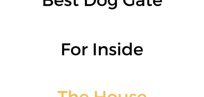 Best Dog Gate For Inside The House