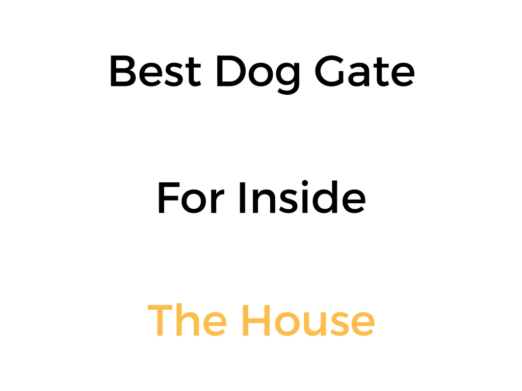 Best Dog Gate For Inside The House Reviews Buyers Guide