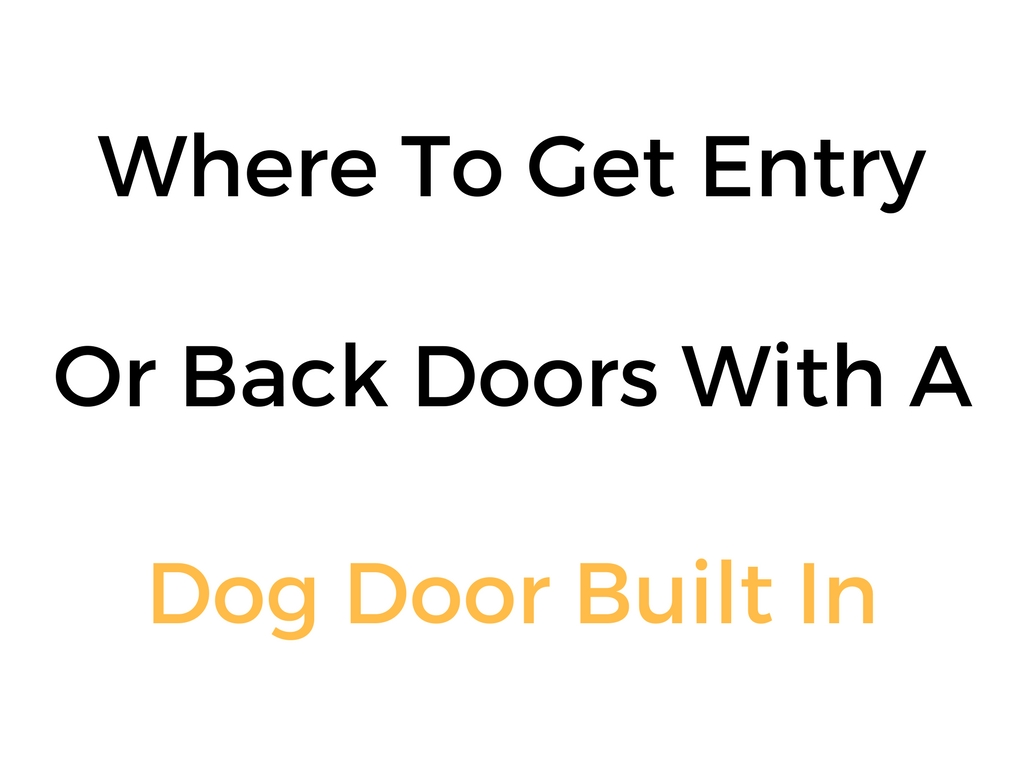 Where To Get Entry Or Back Doors With A Dog Door Built In