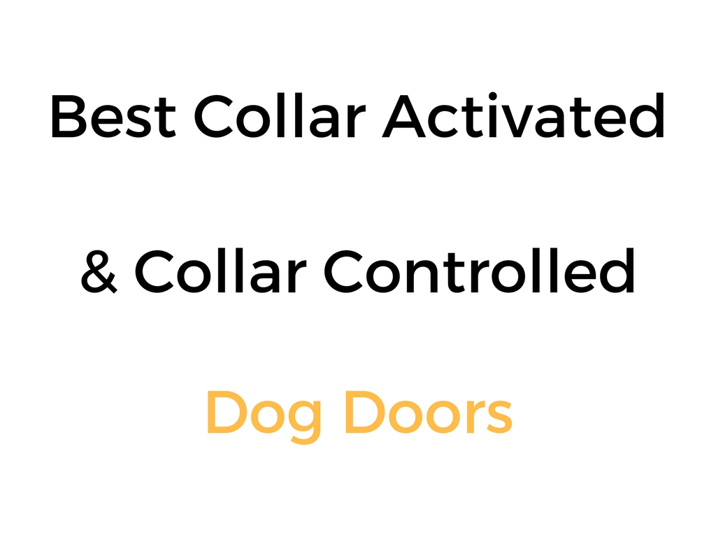 Best Collar Activated Amp Collar Controlled Dog Doors