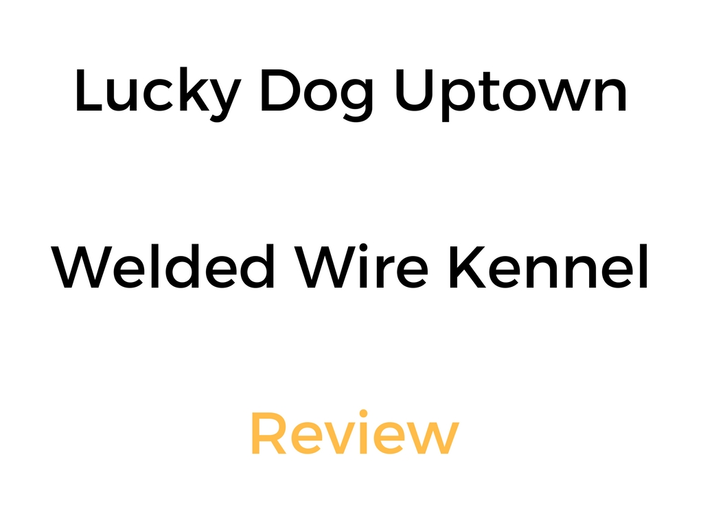 Lucky Dog Kennel   Review