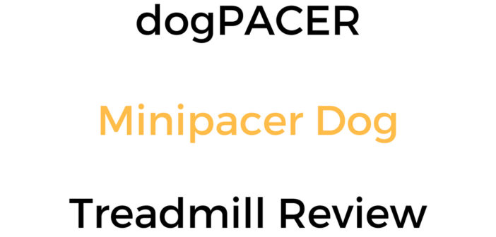 dogPACER Minipacer Dog Treadmill Review & Buyer's Guide