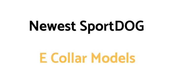 Updated/New SportDOG E Collar Models: New Models & Their Features